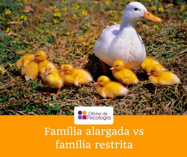 Família alargada vs família restrita