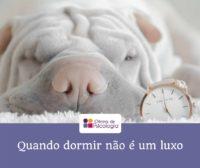 Quando dormir não é um luxo