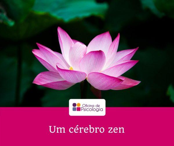 Um cérebro zen