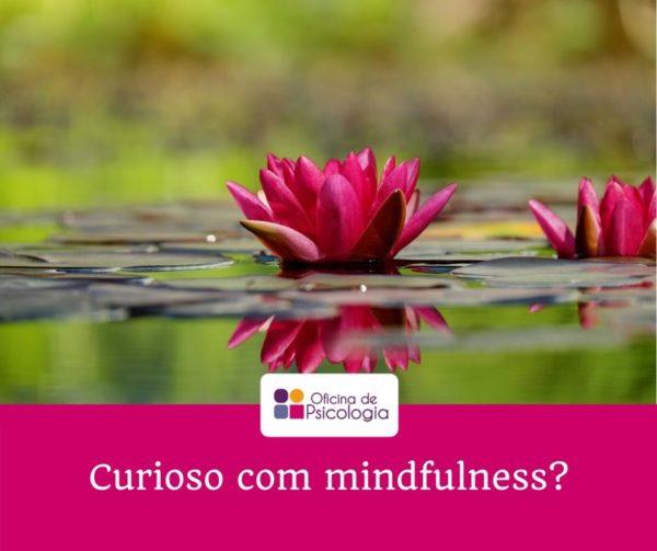 Curioso com mindfulness?