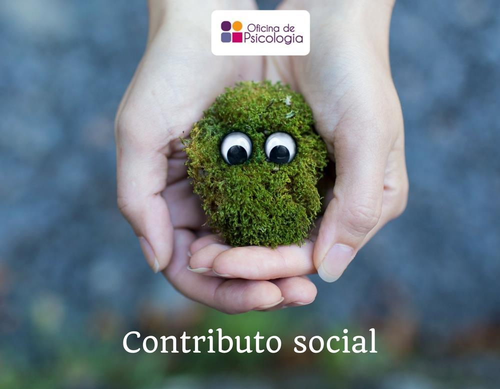 Contributo social