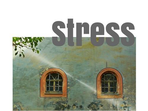 O que eu faço com o stress?