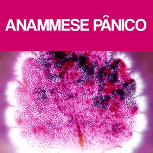 Anamnese de pânico
