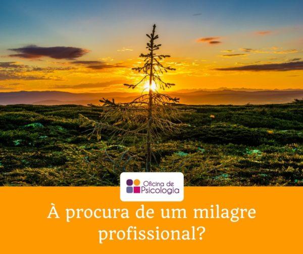 A procura de um milagre profissional