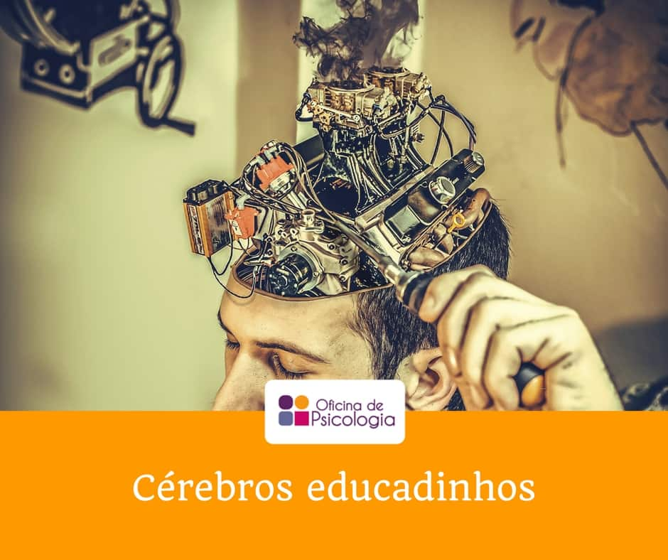 Cérebros educadinhos