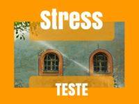 Quanto stress sente na sua vida?