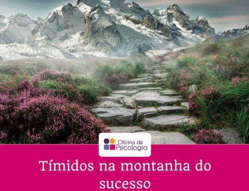 Tímidos na montanha do sucesso