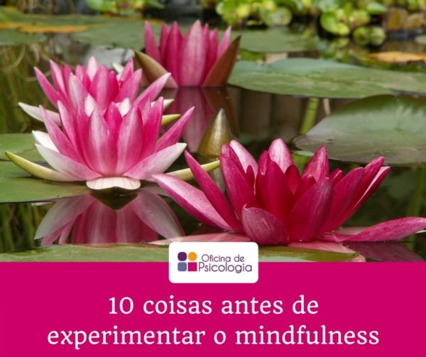 10 coisas antes de experimentar o mindfulness