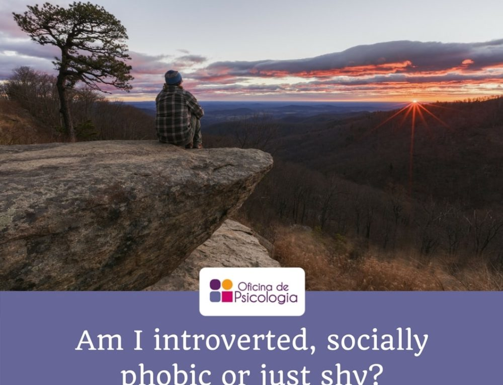 Am I introverted, socially phobic or just shy?