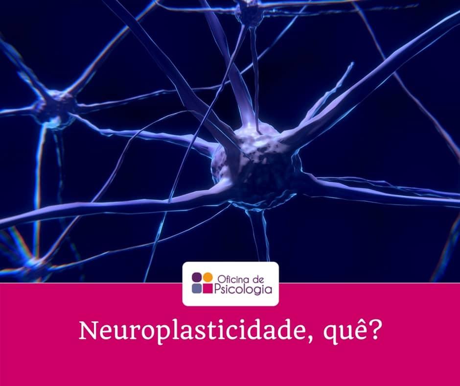 Neuroplasticidade, quê?