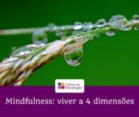 Mindfulness viver a 4 dimensões