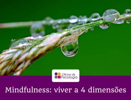 Mindfulness: viver a 4 dimensões