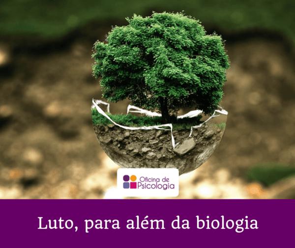 Luto para além da biologia