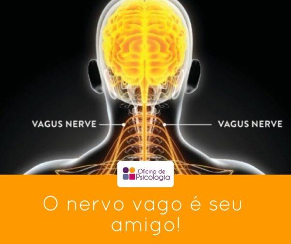 O nervo vago é seu amigo