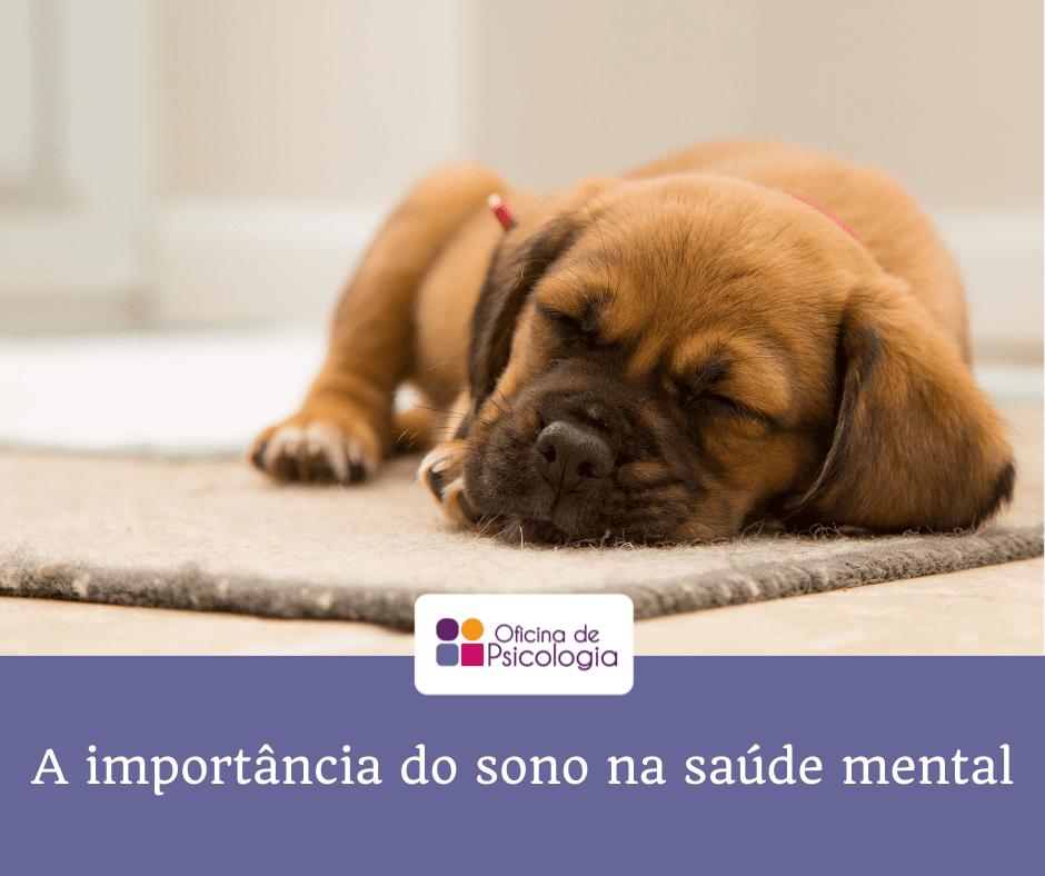 A importãncia do sono na saúde mental